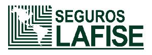 LogoLAFISE